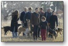 Διαβάστε περισσότερα: 14o Φεστιβάλ Κινηματογράφου Αθήνας