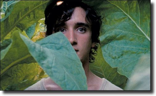 b_505X0_505X0_16777215_00_images_1718_happy-as-lazzaro.jpg